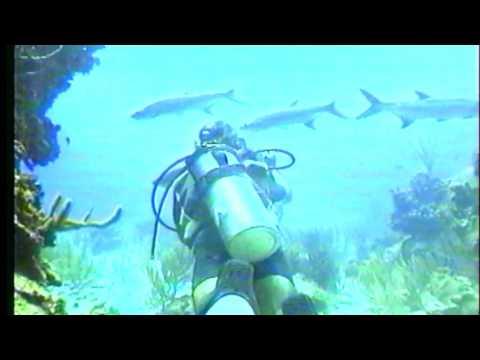 Underwater Explorer   Diving East Grand Cayman