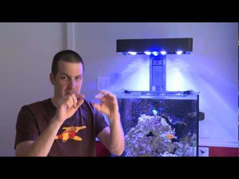 Mr. Saltwater Tank Reviews the Hydor Slim Skim