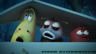 LARVA - HIDE AND SEEK 2 | Cartoon Movie | Cartoons For Children | Larva Cartoon | LARVA Official