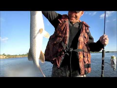 рыбалка на иртыше чем на что и как ловить