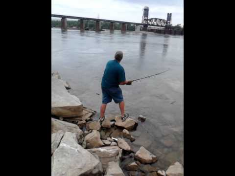 A Striped Bass/Rock Fish at the chickamauga dam