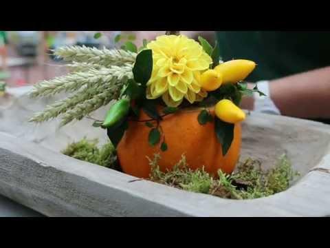 Zierkürbis Als Tischdeko - Einfach Ein Tolles Mitbringsel Erstellen