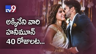 Naga Chaitanya and Samantha to have a 40-day honeymoon?