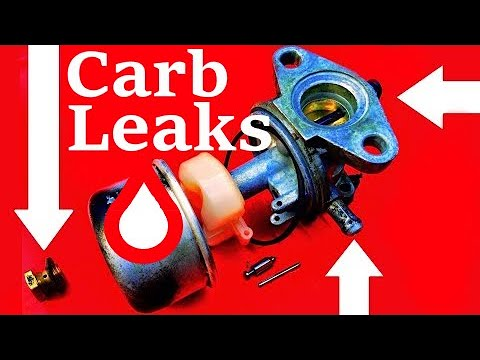 SOLVED! Gas Leaks on Lawn Mowers- How to Diagnose and Fix them.