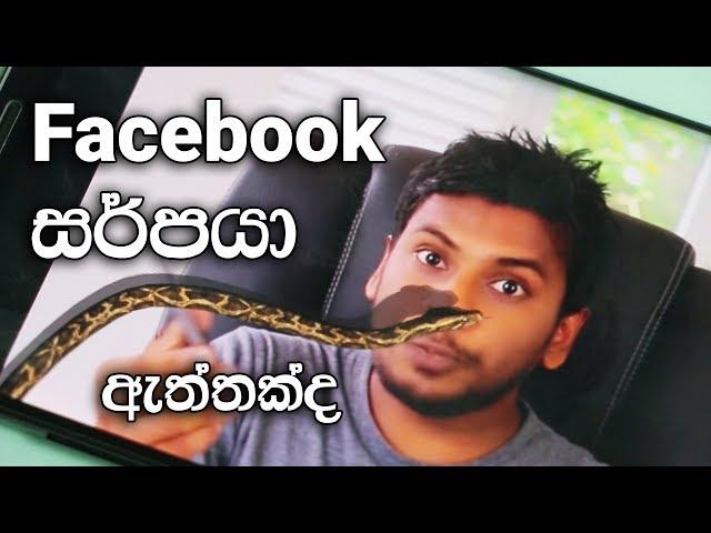 Snake on Screen or Snake on Facebook ?