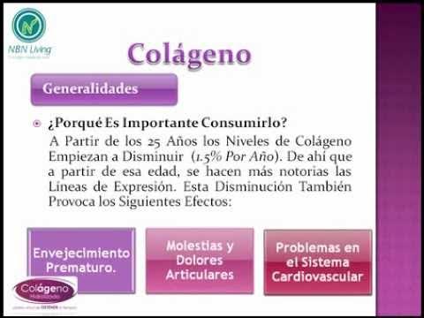 Alimentos con colageno y elastina que ayudan en el cuerpo share the knownledge - Alimentos con colageno hidrolizado ...