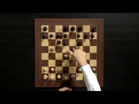 Magnus Carlsen Chess Training on Play Magnus App: How to Play the Opening