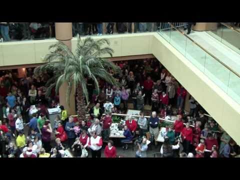Flash Mob Hallelujah Chorus @ Scottsdale Fashion Square - December 22, 2010