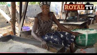 Garri: Cassava Production