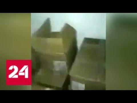 Прокуроры Сургута разбираются с магазином, где подростка заперли в холодильнике - Россия 24