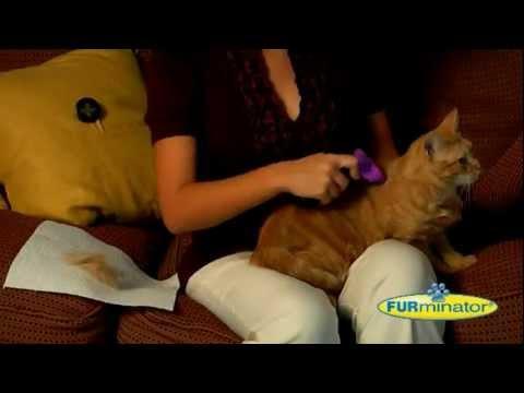 Furminator spazzole e accessori per la cura del tuo cane e gatto – Coltelleria Collini