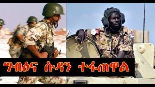 ሱዳን ድንበሯን ዘጋጅ! Sudanese troops deployed on border with Eritrea