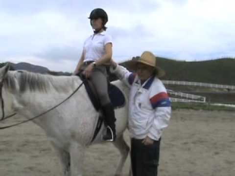 Learning to do Excellent Sitting trot on a horse