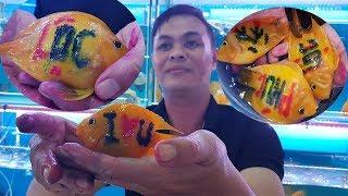 Chuyện lạ Việt Nam, xăm hình cho cá cảnh/ fish tattoos