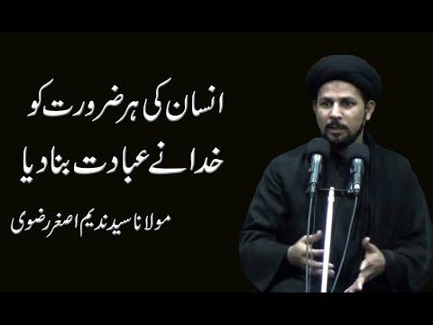 Insan Ki Her Zrorat Ko Khuda Nay Ebadat Bana Diya - Maulana Syed Nadeem Asghr Rizvi