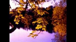 """Осень"" Music Sergey CHEKALIN. ""Autumn"". Beautiful  russian music. 美しいロシアの音楽"
