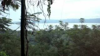 Property within the Golfo Dulce Forest Reserve
