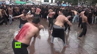 Shia Muslims flagellate themselves during Ashura Holy day celebration