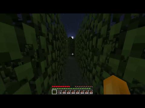 Las 12 Pruebas! | Minecraft - Parte 2