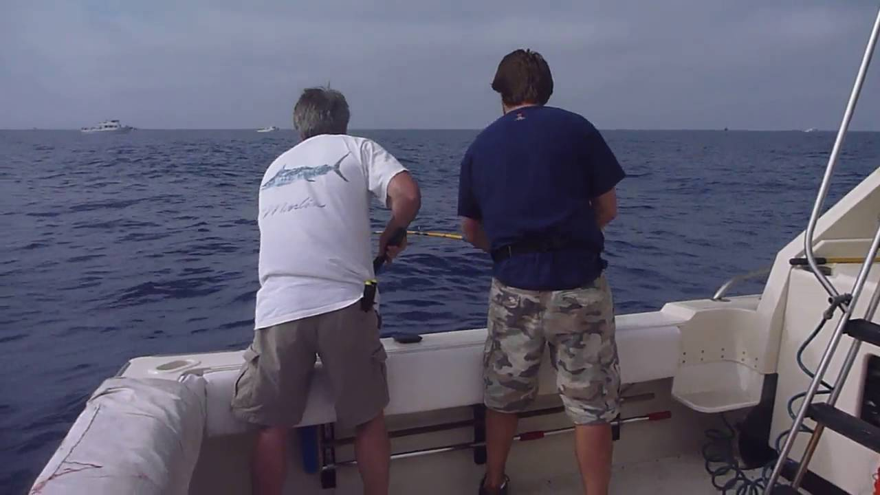 Prime time 6 pack fishing charter san diego fishing bay for San diego fishing charter