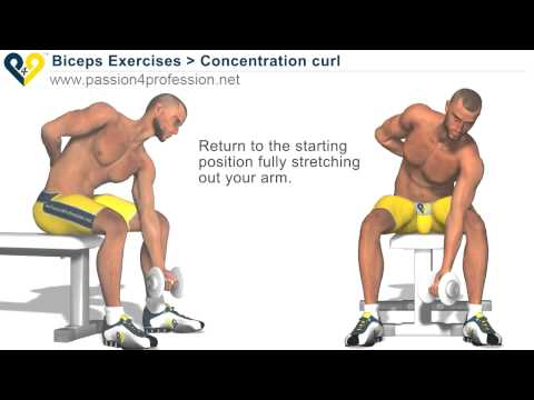 how to download bodybuilding.com workouts