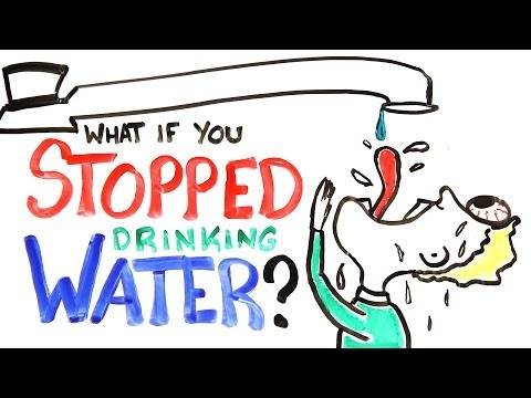 What If You Stopped Drinking Water