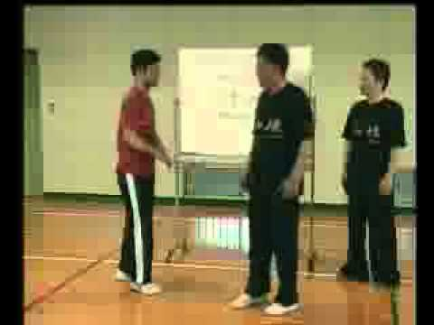 The Baji Quan International Training Center CCTV Documentary - Part 1 Image 1