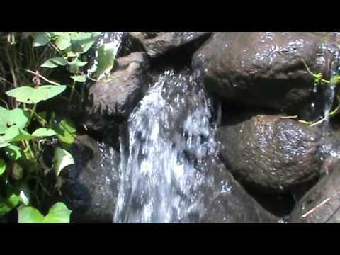Suara Air Untuk Latihan Burung Kicau Bernyanyi