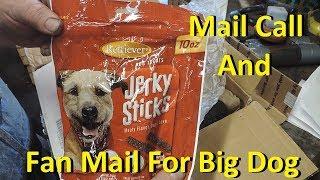 Big Dog Mail Call