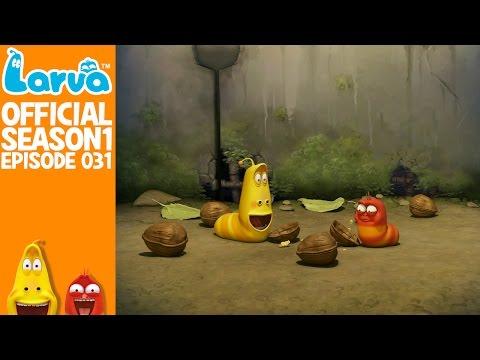 [Official] Walnut - Larva Season 1 Episode 31