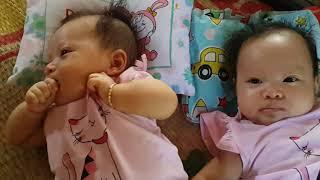 Misa & Misu