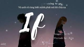 [Engsub+Vietsub Tiktok Song] If - Từ Vi/徐薇《Cover Dingke/丁可》~And you know you saying to go~