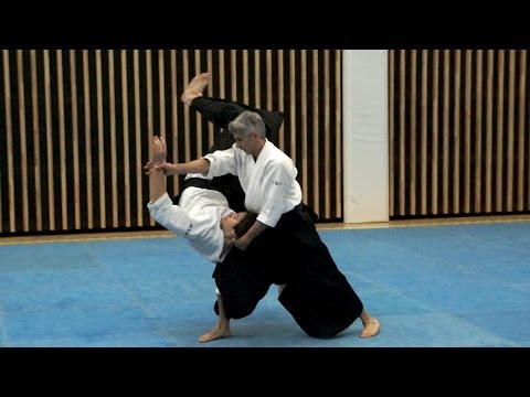 Aikido: Bruno GONZALEZ - working with Jo movements Image 1