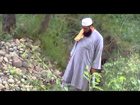 Kary Sahib video