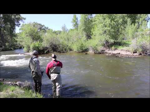 Colorado Fly Fishing 2014