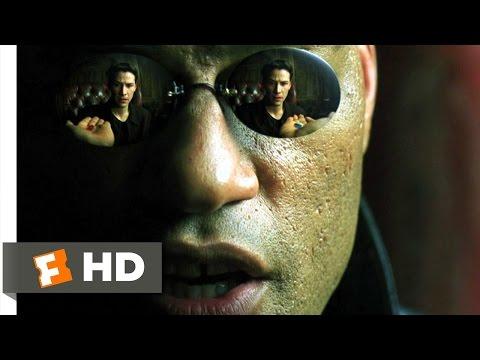 Blue Pill or Red Pill - The Matrix (29) Movie CLIP (1999) HD