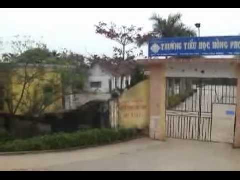 LK organ không lời 2012