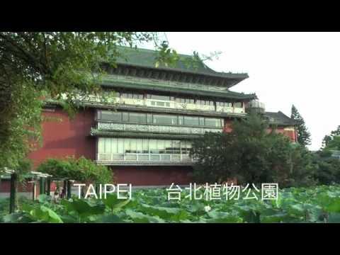 Taiwan Hakka food 客家菜