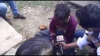Krantikari @aajtak of @sardesairajdeep caught again