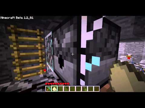 Minecraft Chicken Farm video