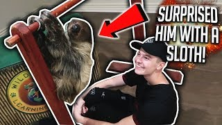 SURPRISING MY ROOMMATE WITH A PET SLOTH!!