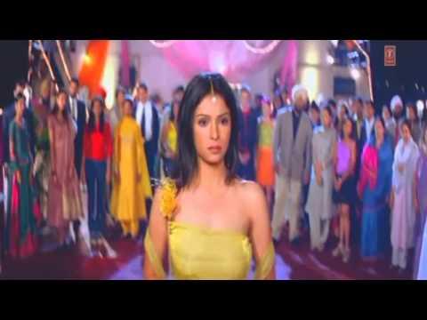 Dil Ta Pagal Hai & Pakki Kanak video
