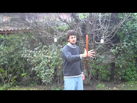 Nunchaku For Beginners 101 (lesson 1) video