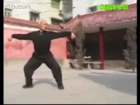 The Rarely Seen Kungfu Styles of Jiangxi Province