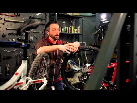 Buyer's Guide: 26-inch vs 29-inch Mountain Bikes by Performance Bicycle
