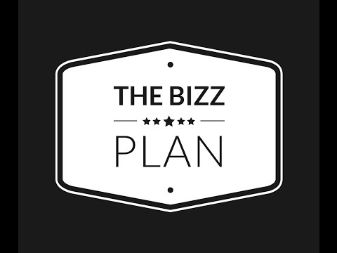 The BIZZ Plan | An Introduction