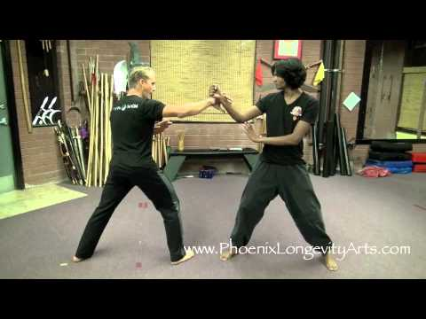 Eagle Claw Kung Fu, Awesome!
