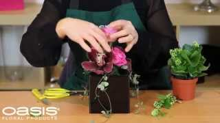 OASIS® Floral Products ~ How To ~ Cake Celebration