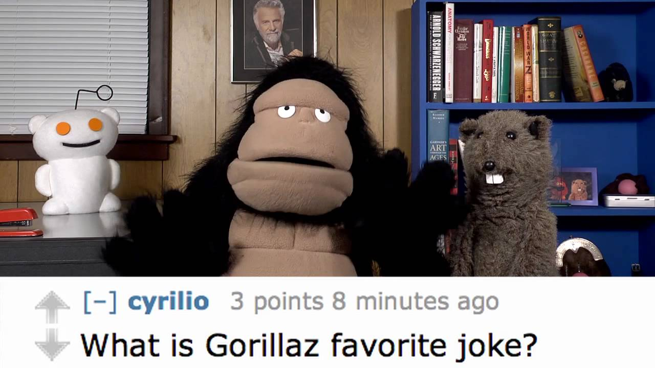 Purple Gorilla Joke Gorilla's Favorite Joke