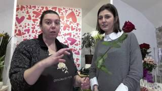 Come far durare i fiori recisi in vaso